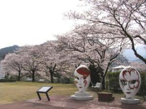 2010sakura13